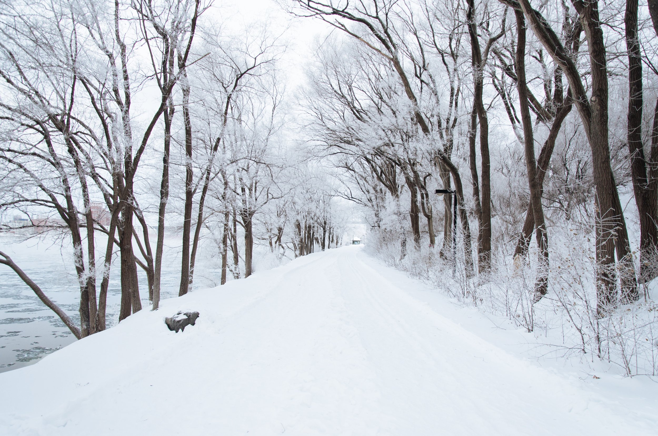 6 Things To Do When Winter Is Being A Stone Cold B*tch via Worthy Pause