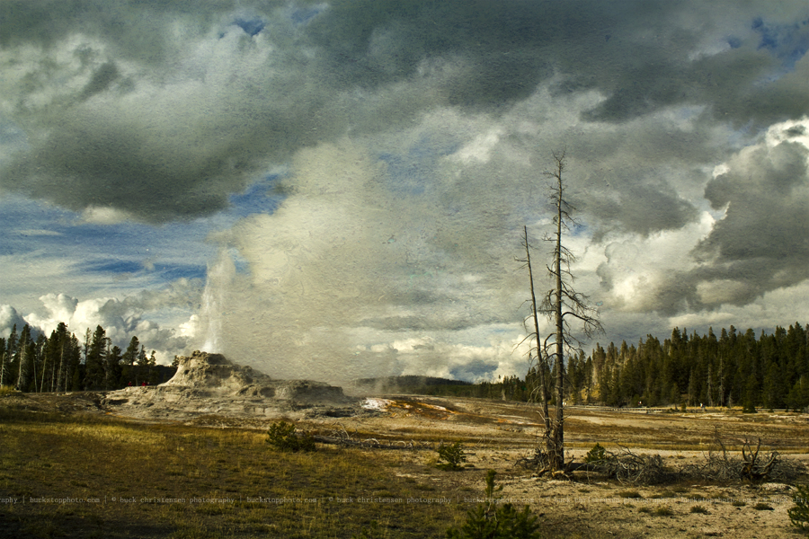 yellowstoneandtetons056