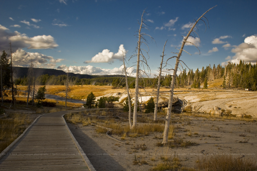 yellowstoneandtetons068