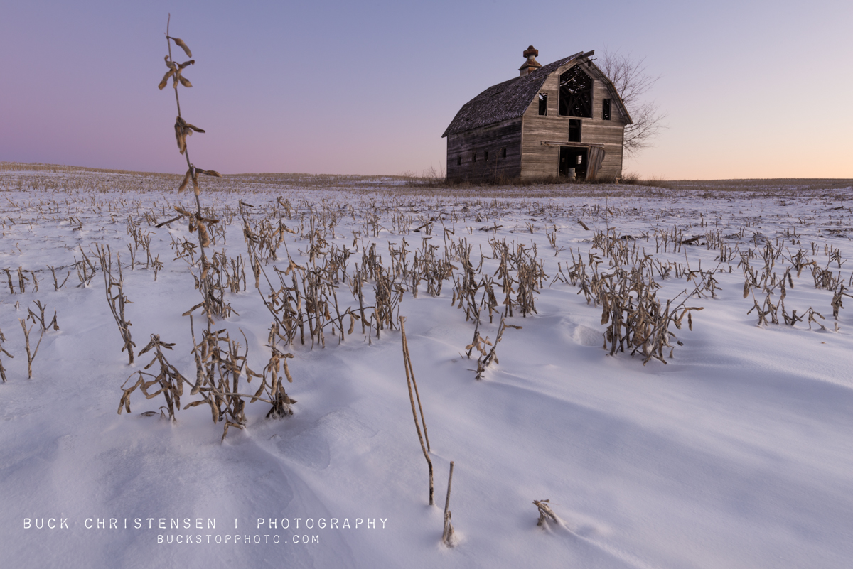 Barn, soybeans, and snow near I-80 in West Omaha, Nebraska.