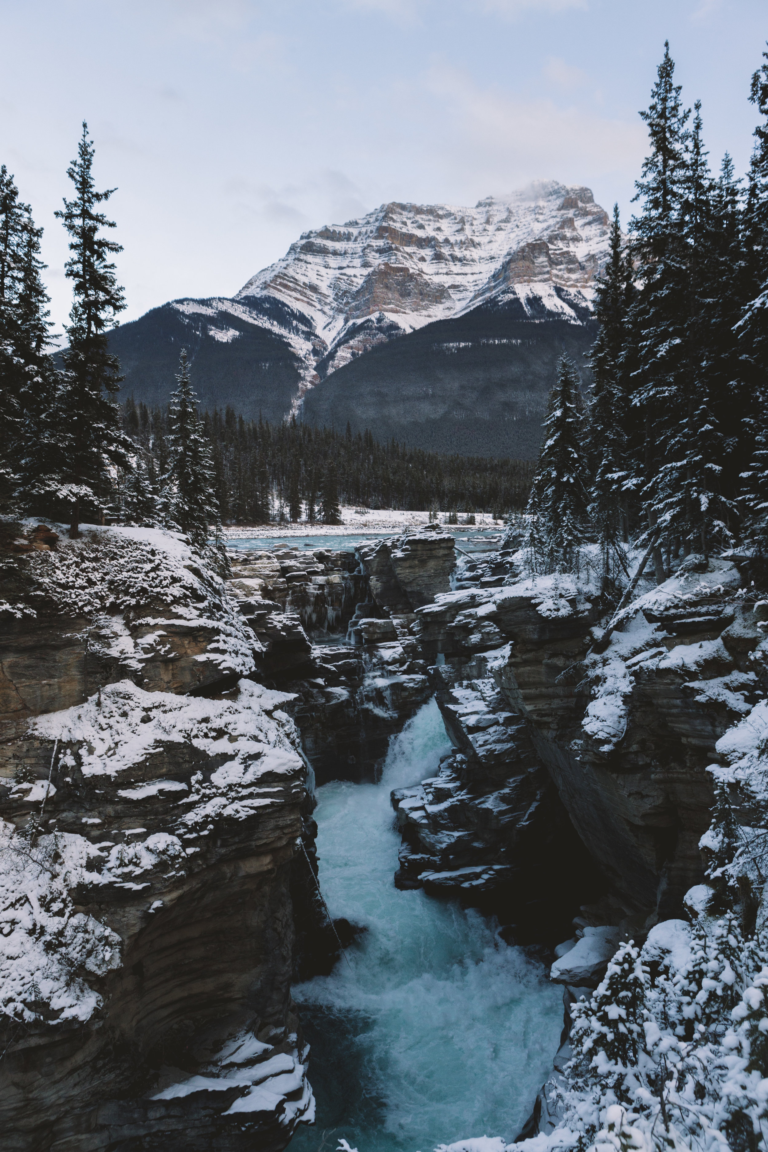 AthabascaFalls-7418.jpg