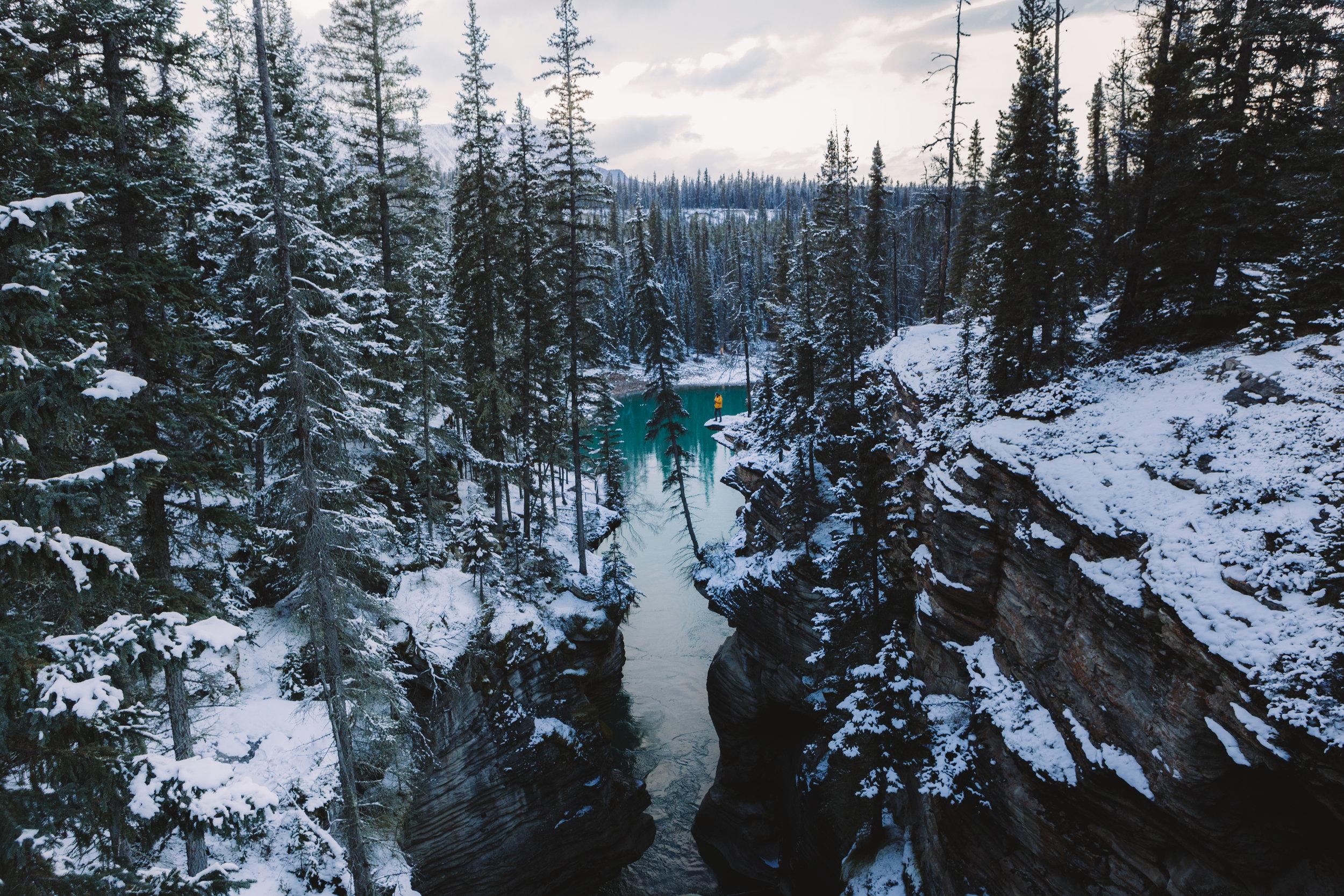 AthabascaFalls-7395.jpg