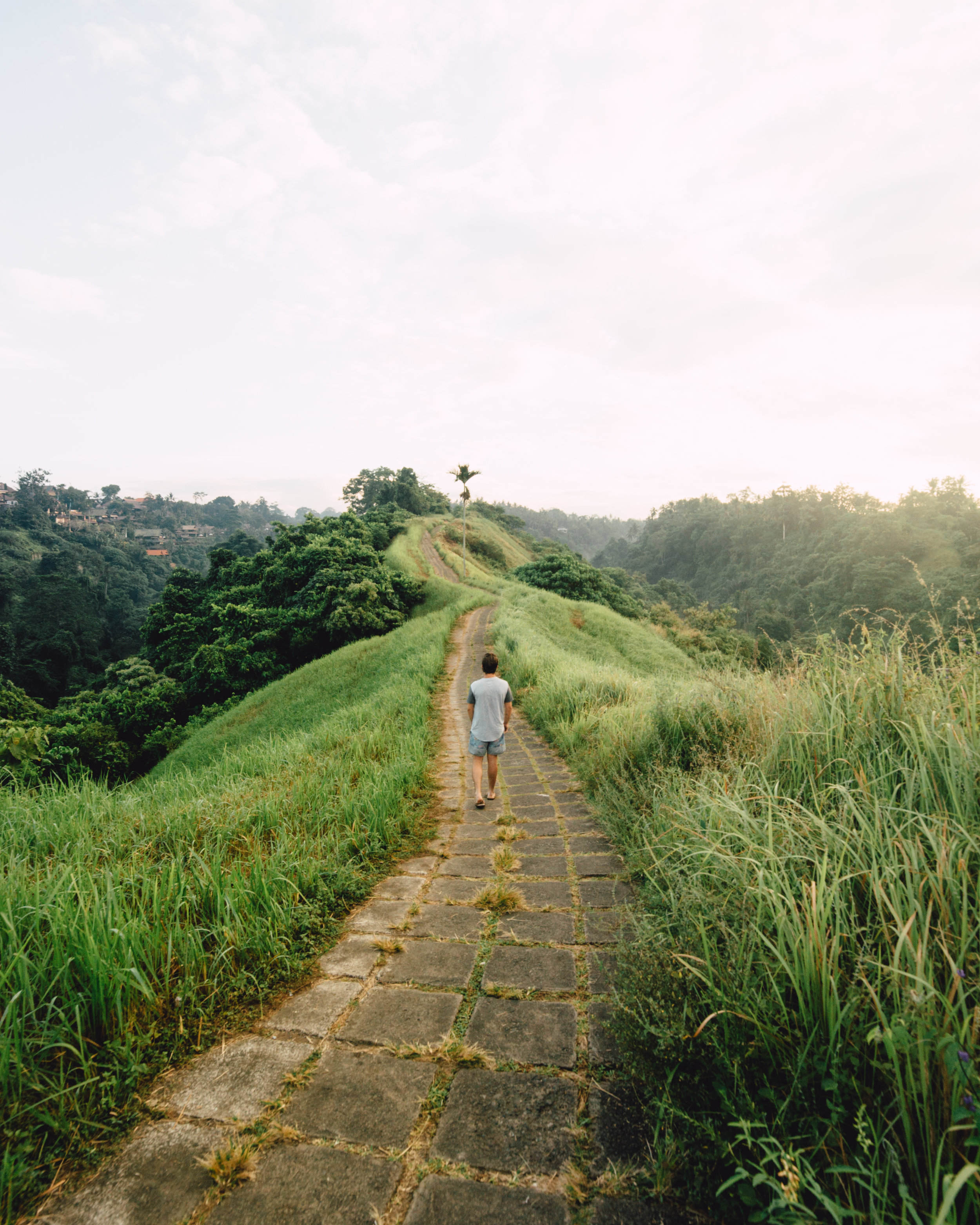 Ubud, Bali-6470.jpg