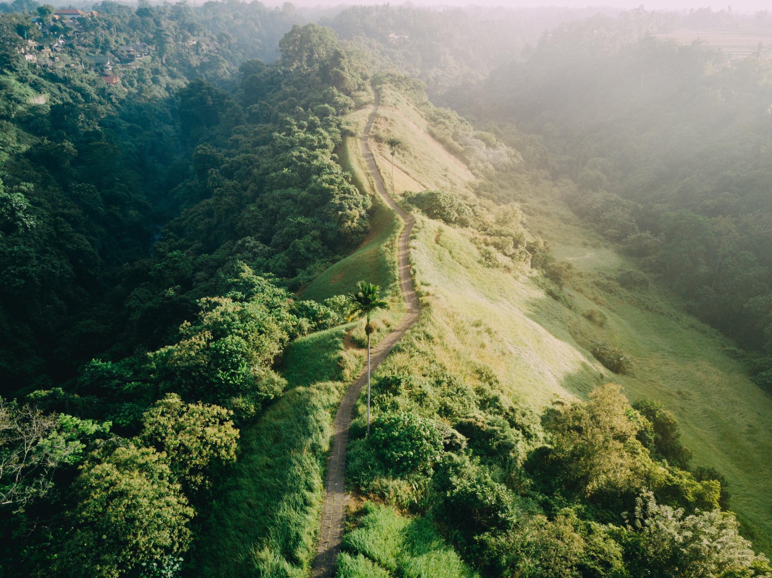 Bali Drone-0172.jpg