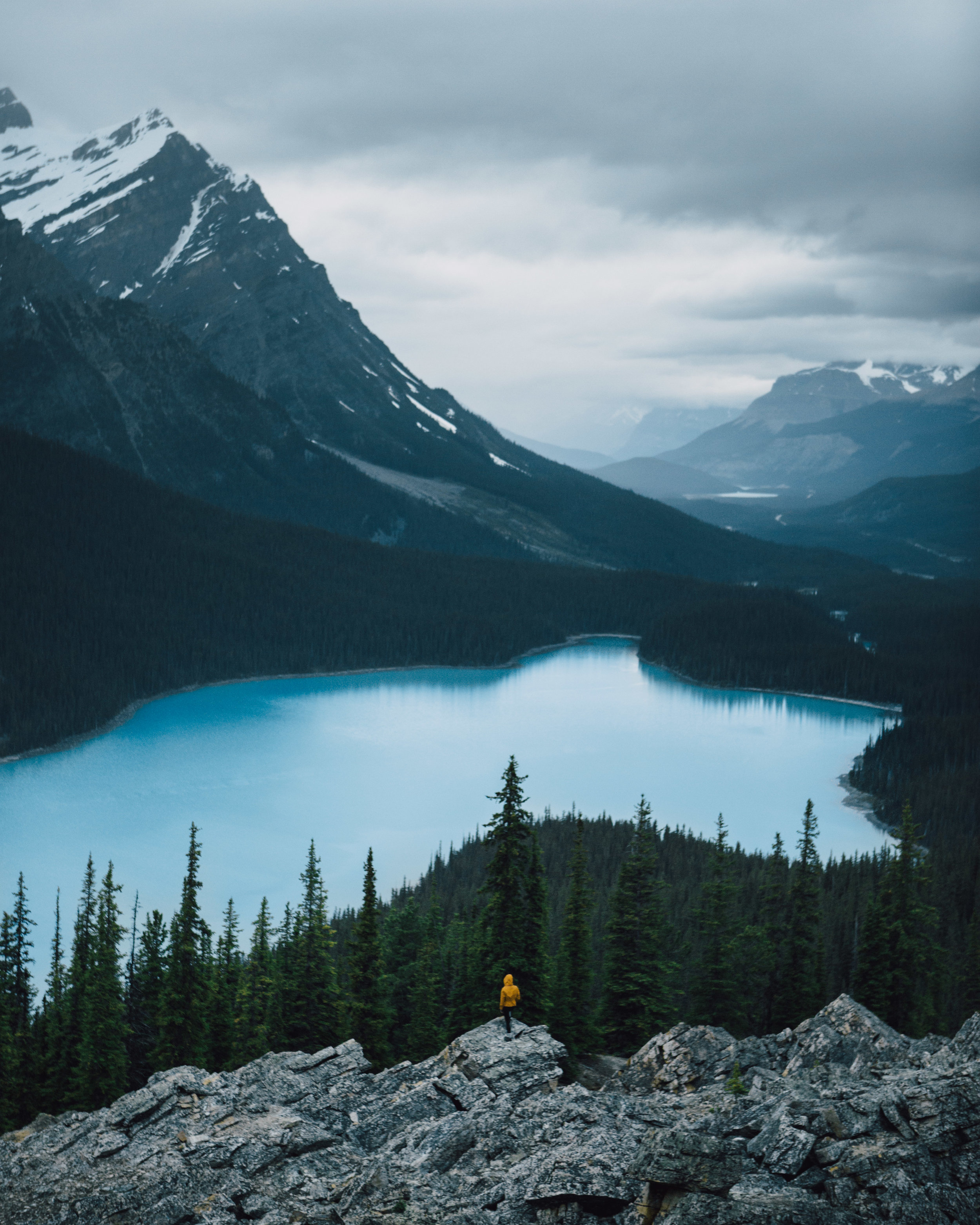 Peyto Lake - low res-4737.jpg