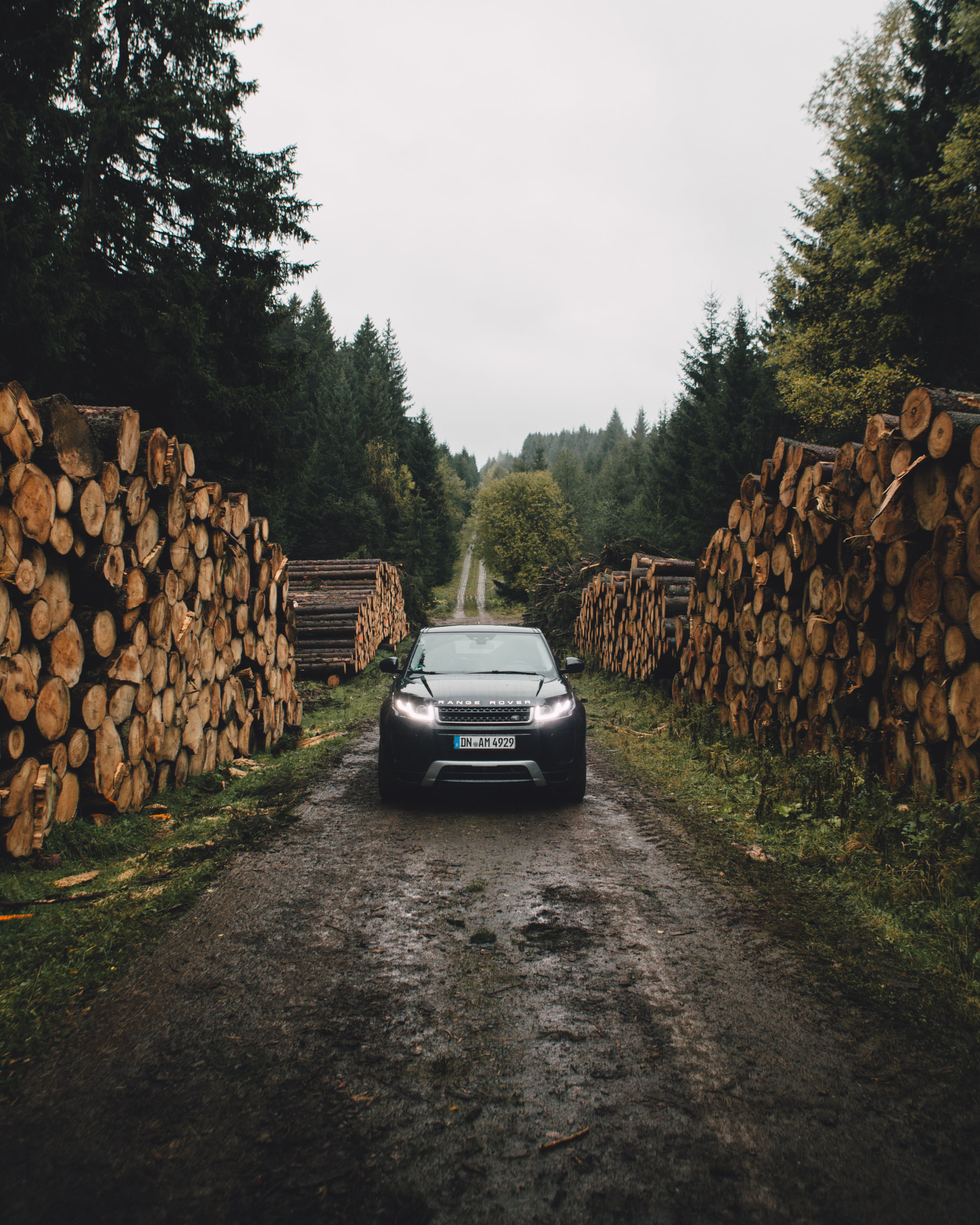 Car- Harz National Park-7340.jpg