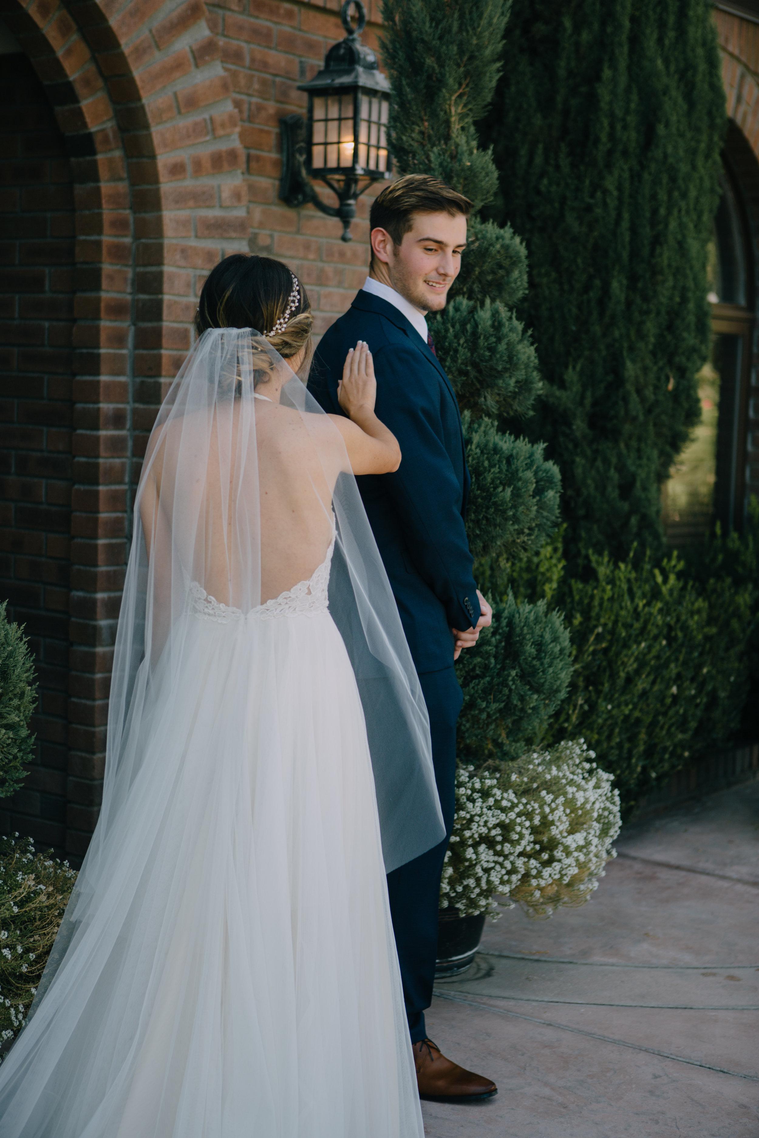 bride and groom-4550.jpg