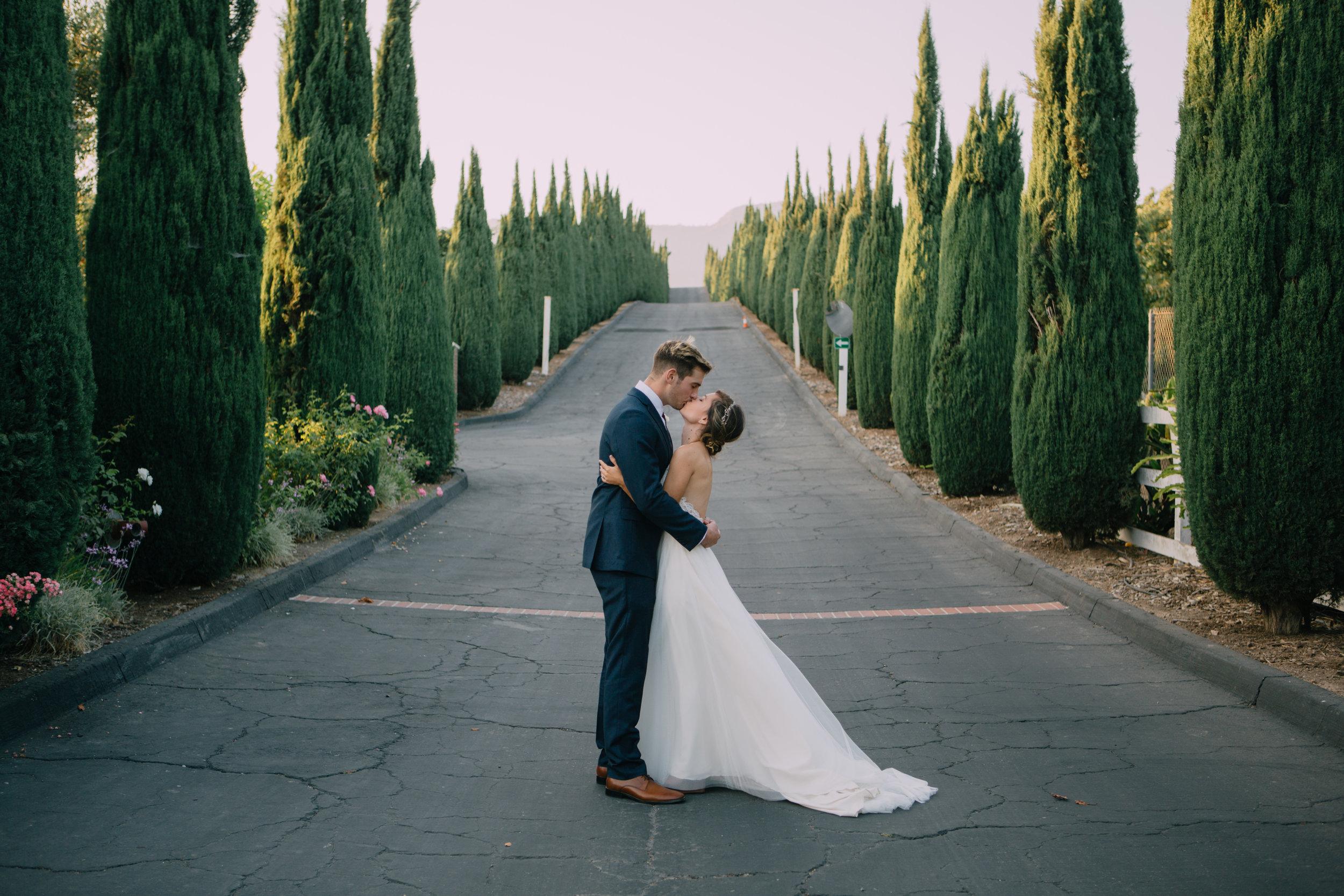 bride and groom-5764.jpg