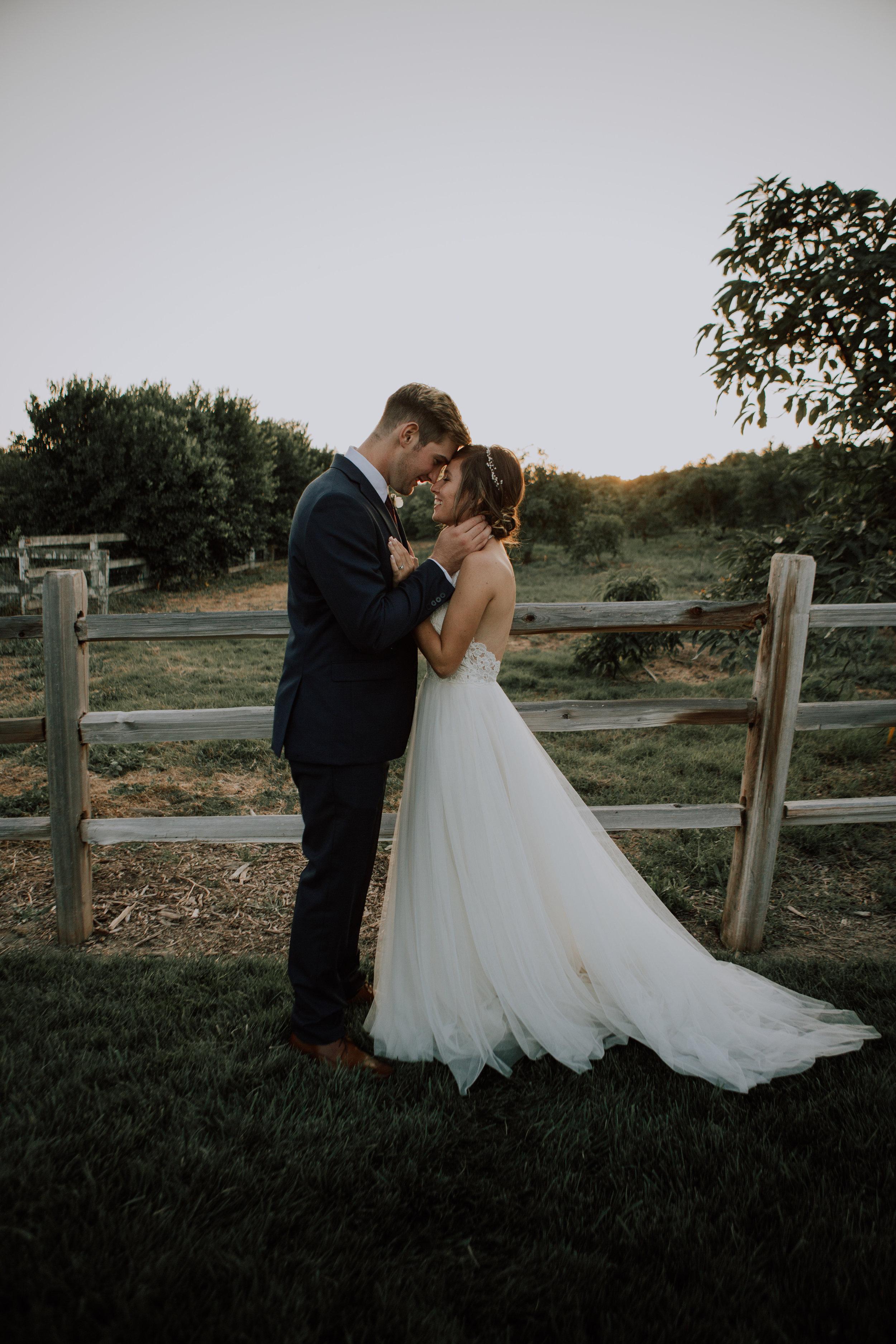 bride and groom-5906.jpg