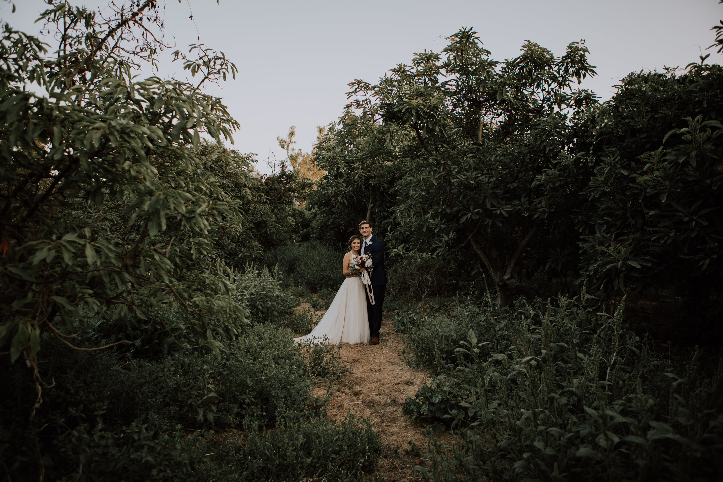 bride and groom-5934.jpg