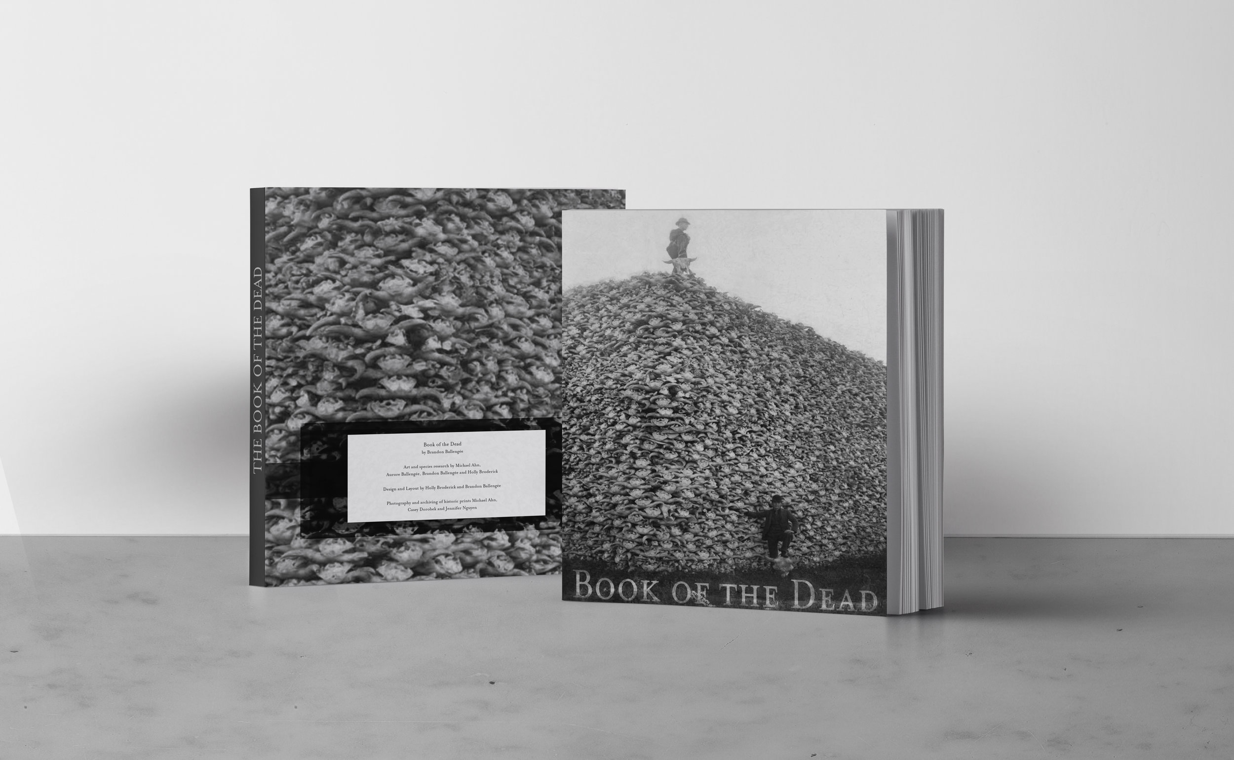 book of the dead mockup.jpg