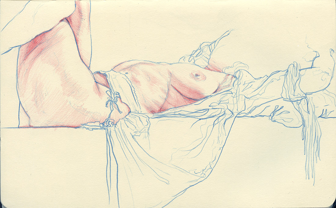 """8"""" x 5"""" Blue and red colored pencil in Moleskine sketchbook. 2016"""