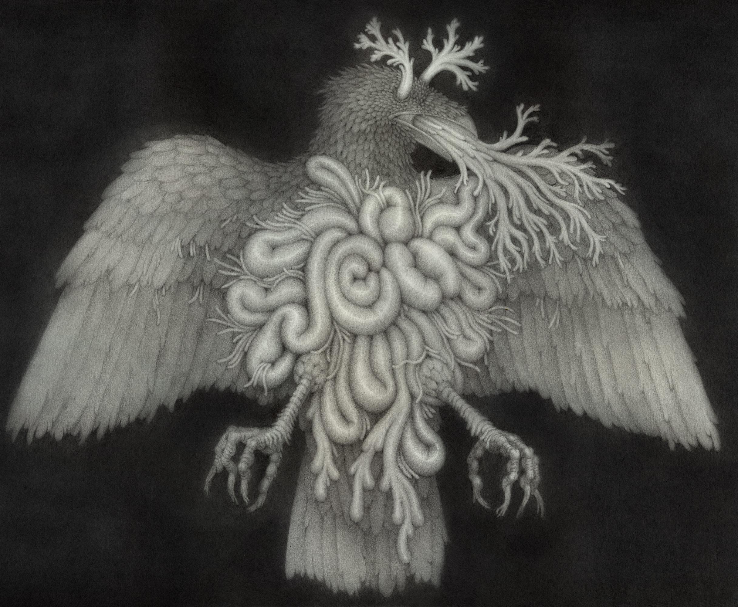 Death Summons The Raven