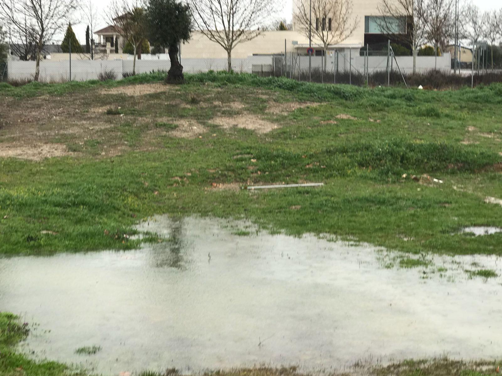 Rain, rain and rain ...soon I'll have a lake in the garden!