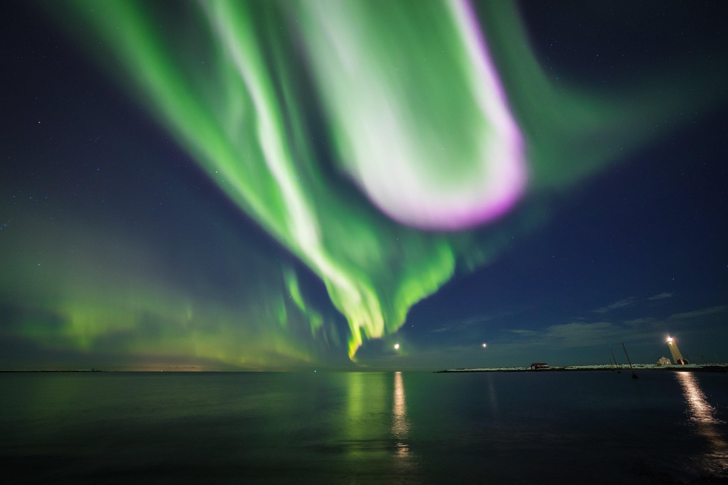 Northern Lights dancing at Grótta Lighthouse