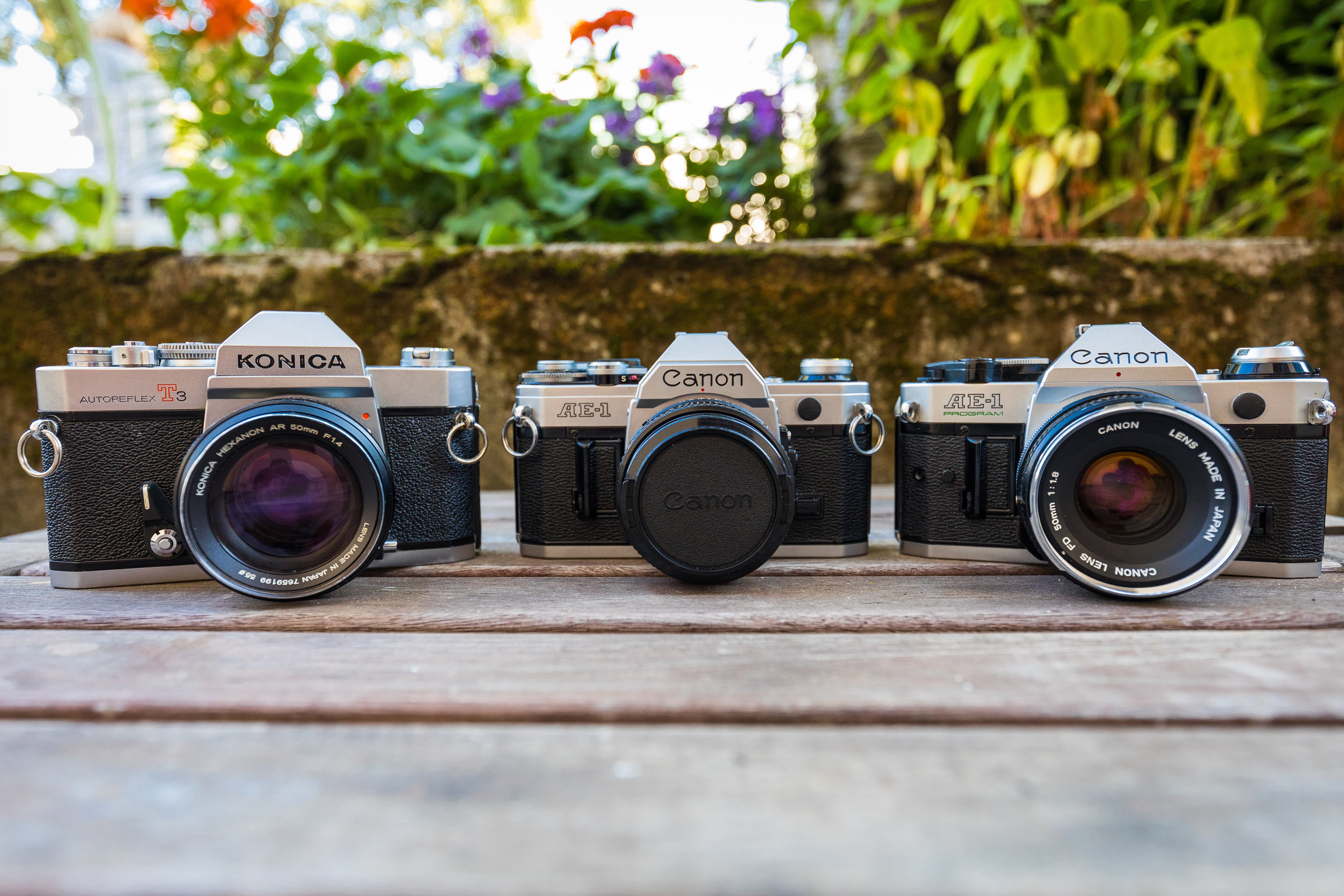 My 35mm SLR collection so far: Konica Autoreflex T3, Canon AE-1 and Canon AE-1 Program