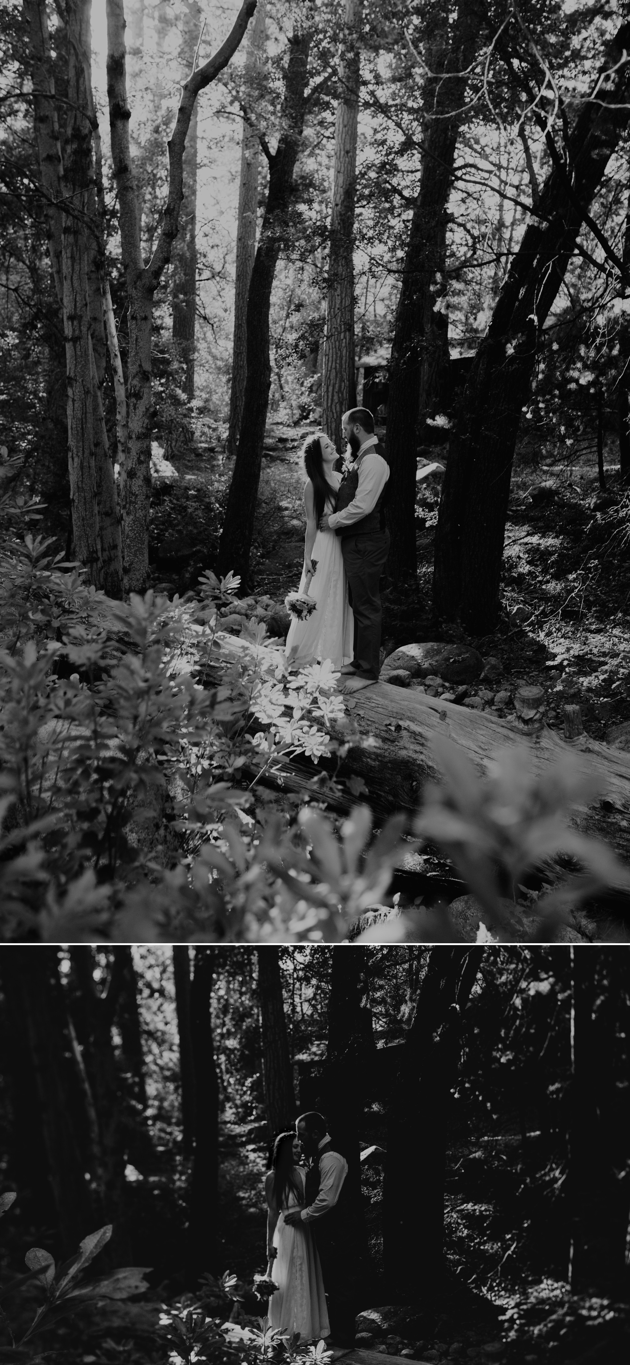 redwoods-elopement-photography.jpg