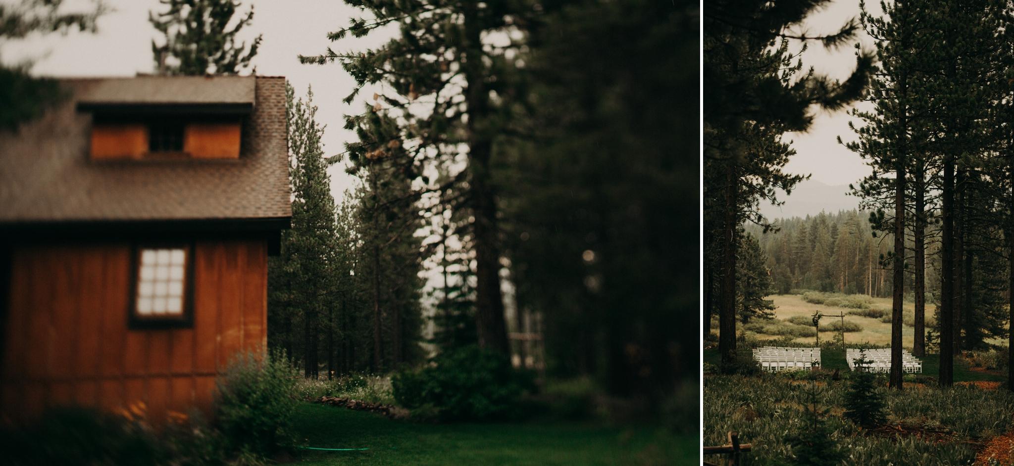 redwood-wedding1.jpg