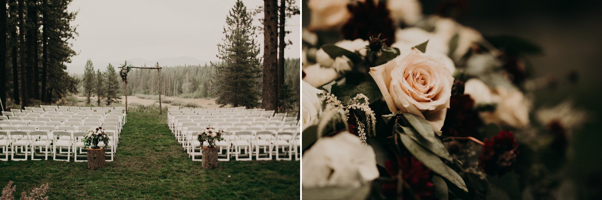 redwood-wedding12.jpg