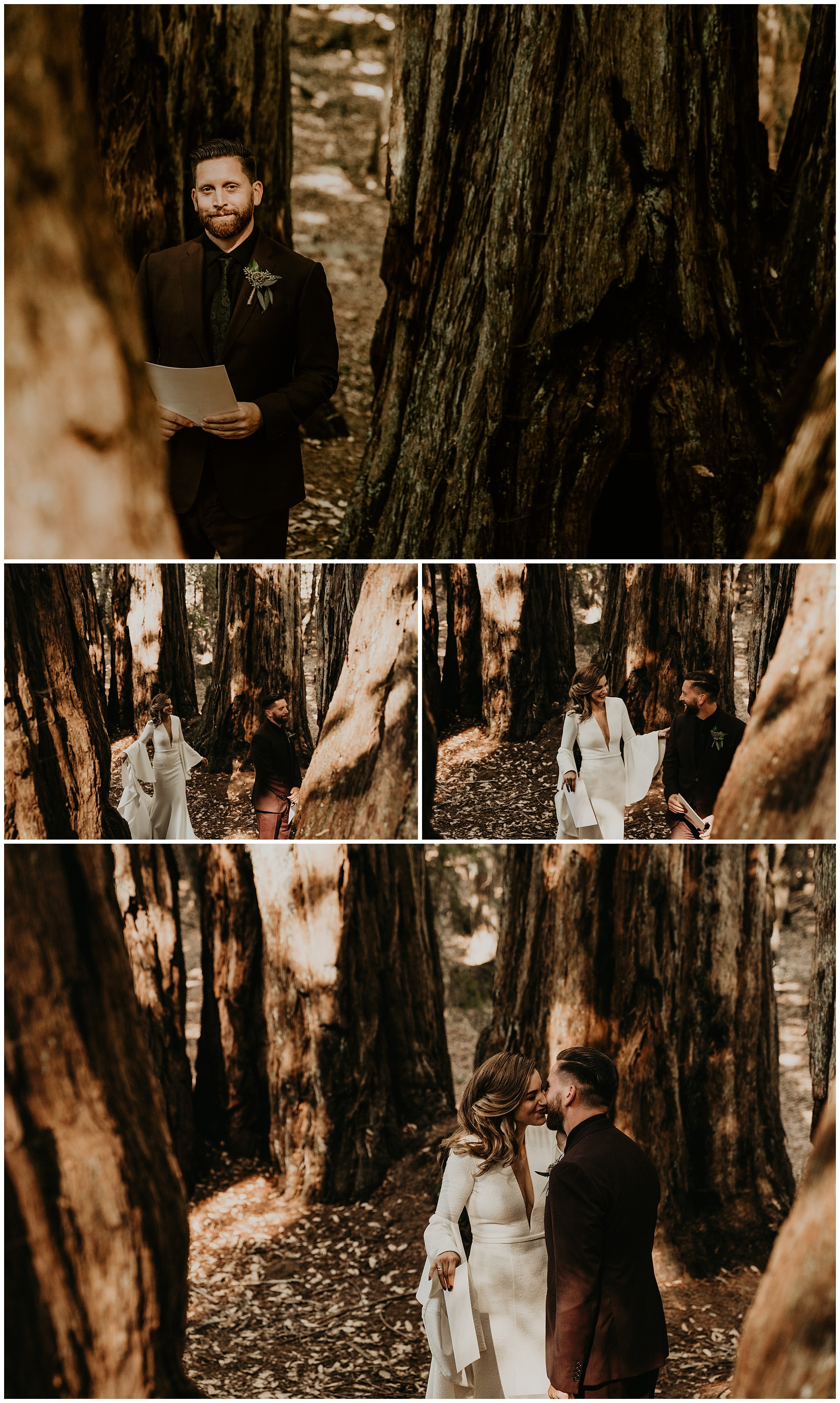 redwood-forest-wedding3.jpg