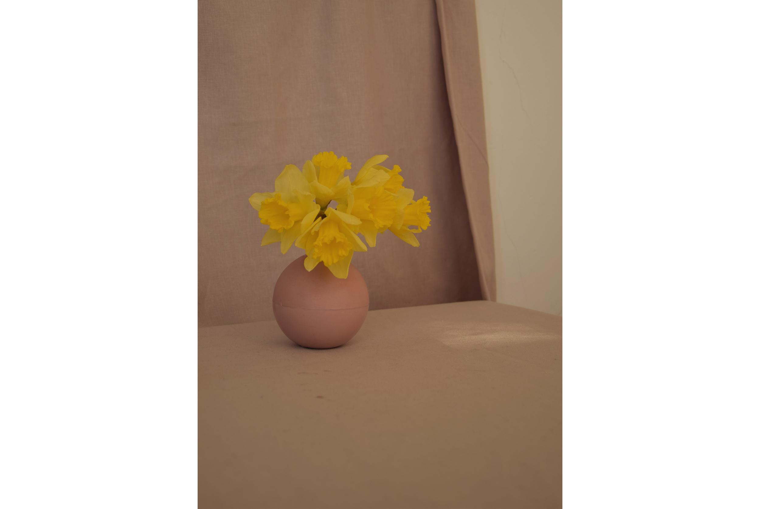 rosebowl-narcissus-studiokryszewski.jpg