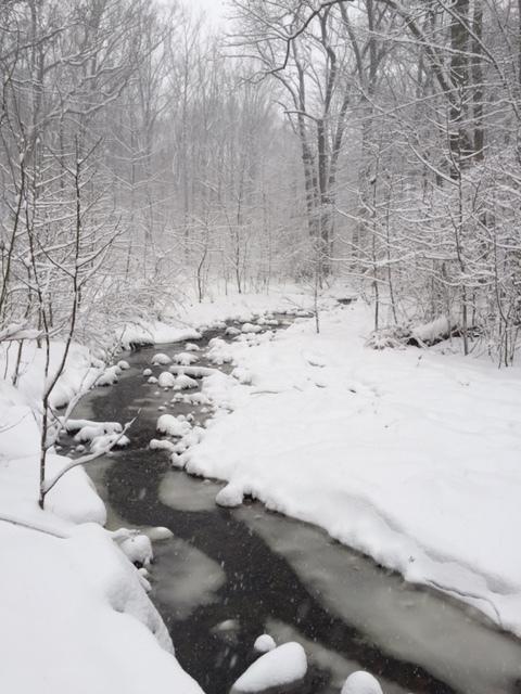 snowy creek.JPG