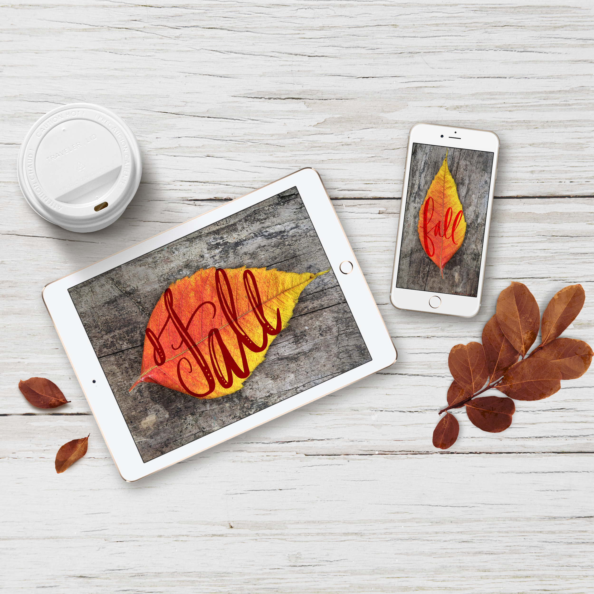 square-fall-autumn-mockups.jpg