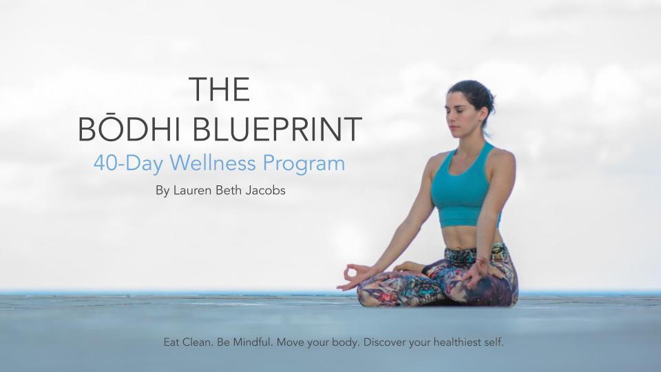 The Bodhi Blueprint Program _ 2019.jpg
