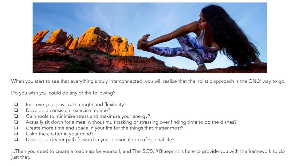 The Bodhi Blueprint Program _ 2019 (5).png