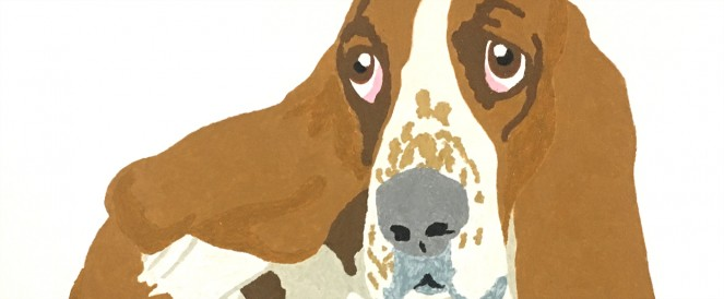 the-invisible-dog-kevin-waldron-animal-behaviour