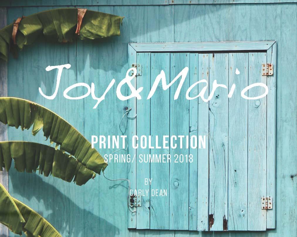 JOY_AND_MARIO_BOOK_2016_2_Page_01.jpg