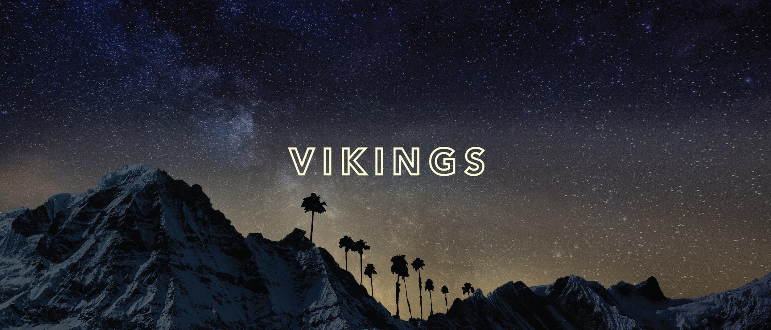 Vikings-Banner1.jpg