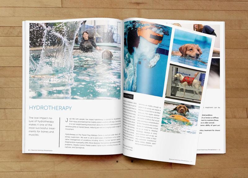 Balanced-Magazine.jpg