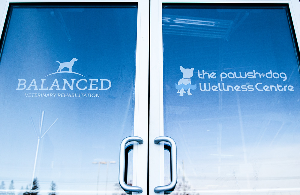 balanced-doors-actual-web.jpg