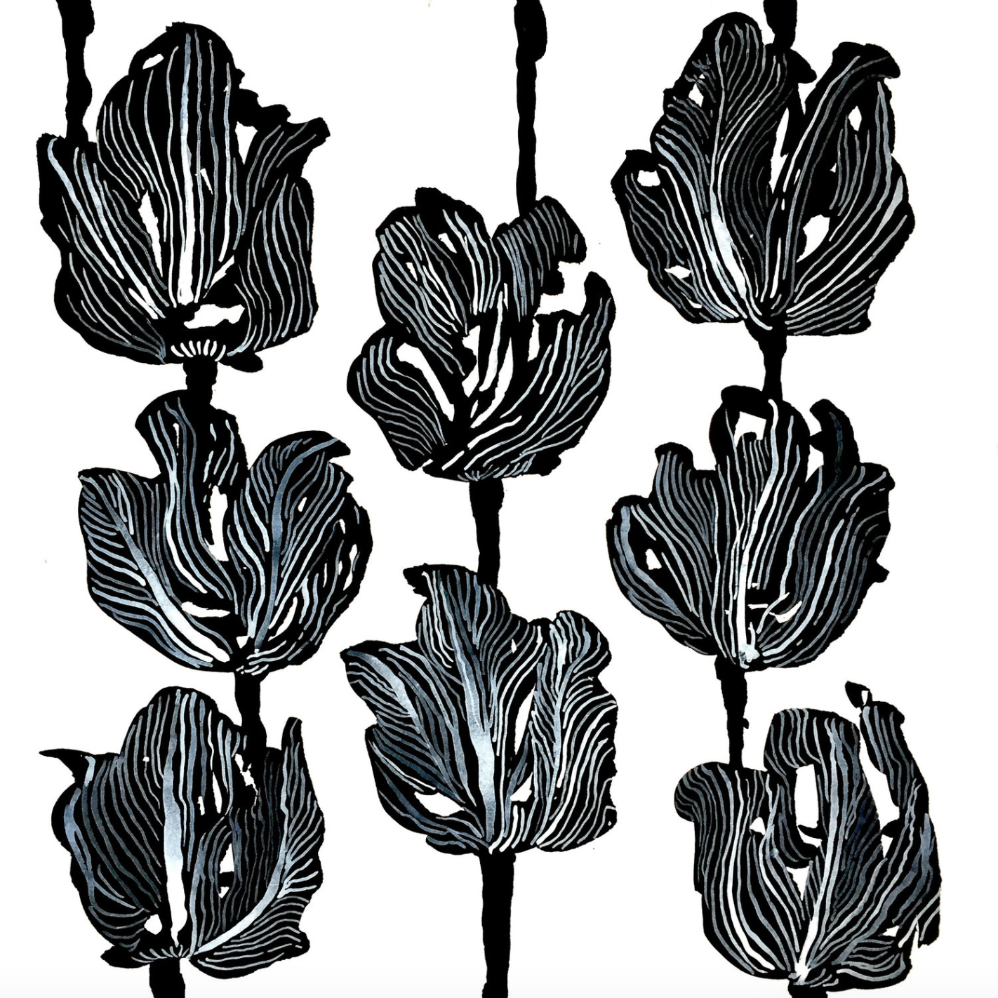 black tulips_port.jpg