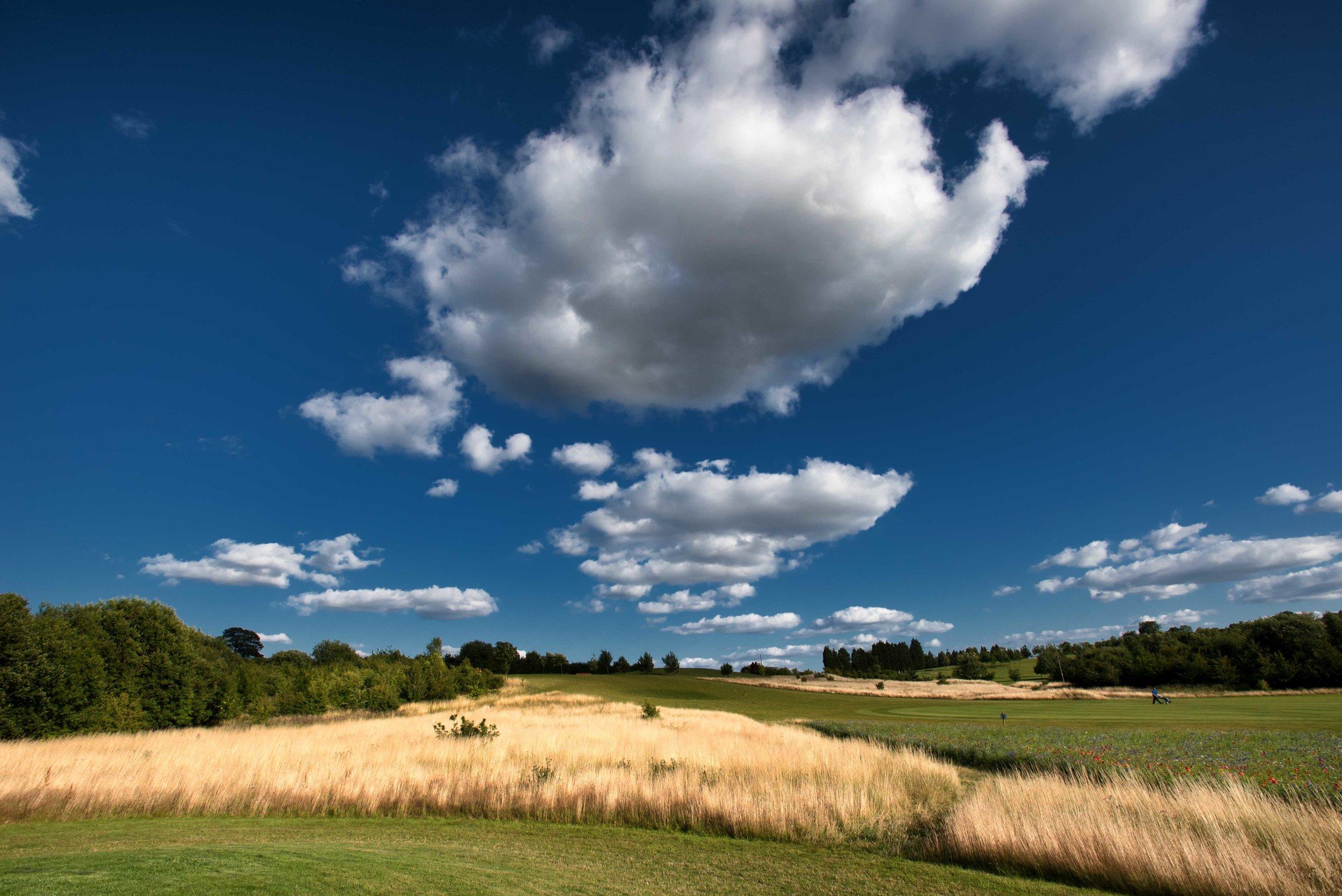 Southco golf-4.jpg