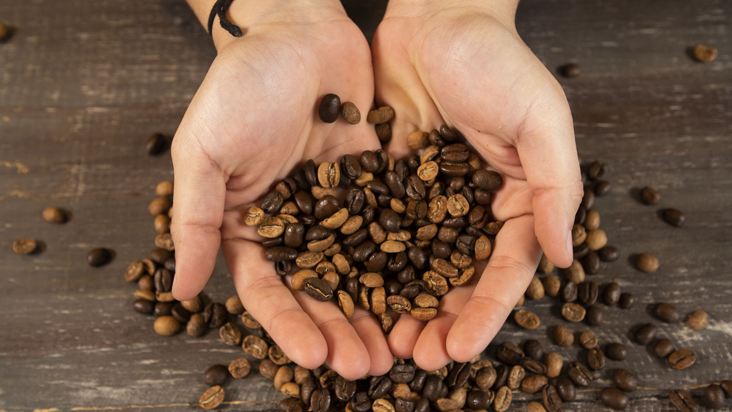 beans_in_hands2.jpg