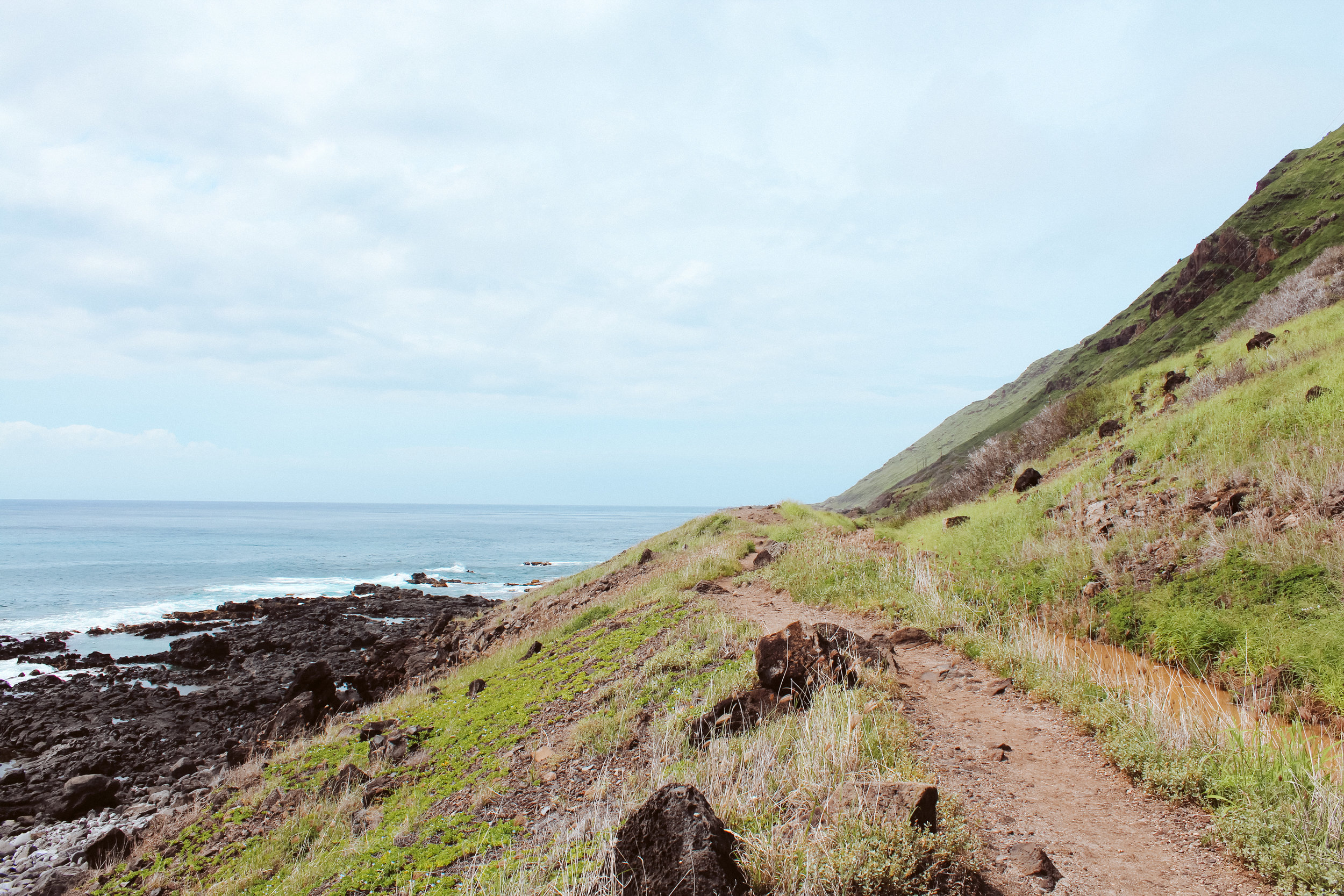 Looking onward towards Kaena Point.