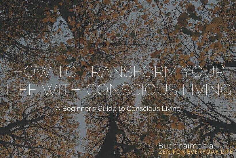 How to Transform Your Life with Conscious Living via Buddhaimonia.com