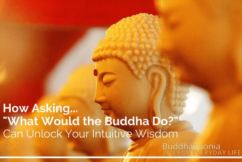 """How Asking """"What Would the Buddha Do?"""" Can Unlock Your Intuitive Wisdom via Buddhaimonia"""