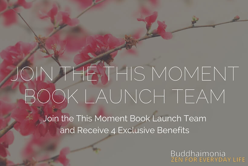 Join the This Moment Book Launch Team (1)