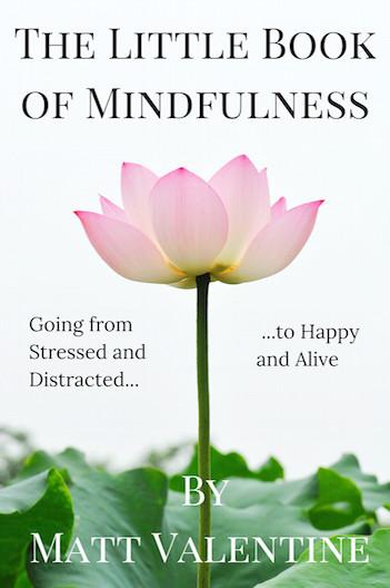 mindfulness newlanding transparent crop2