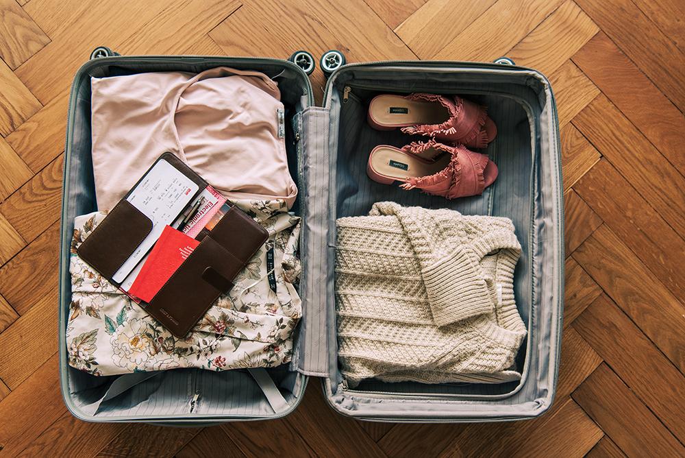 LOST & FOUND_Travel Organizer_Chocolate Rose.jpg
