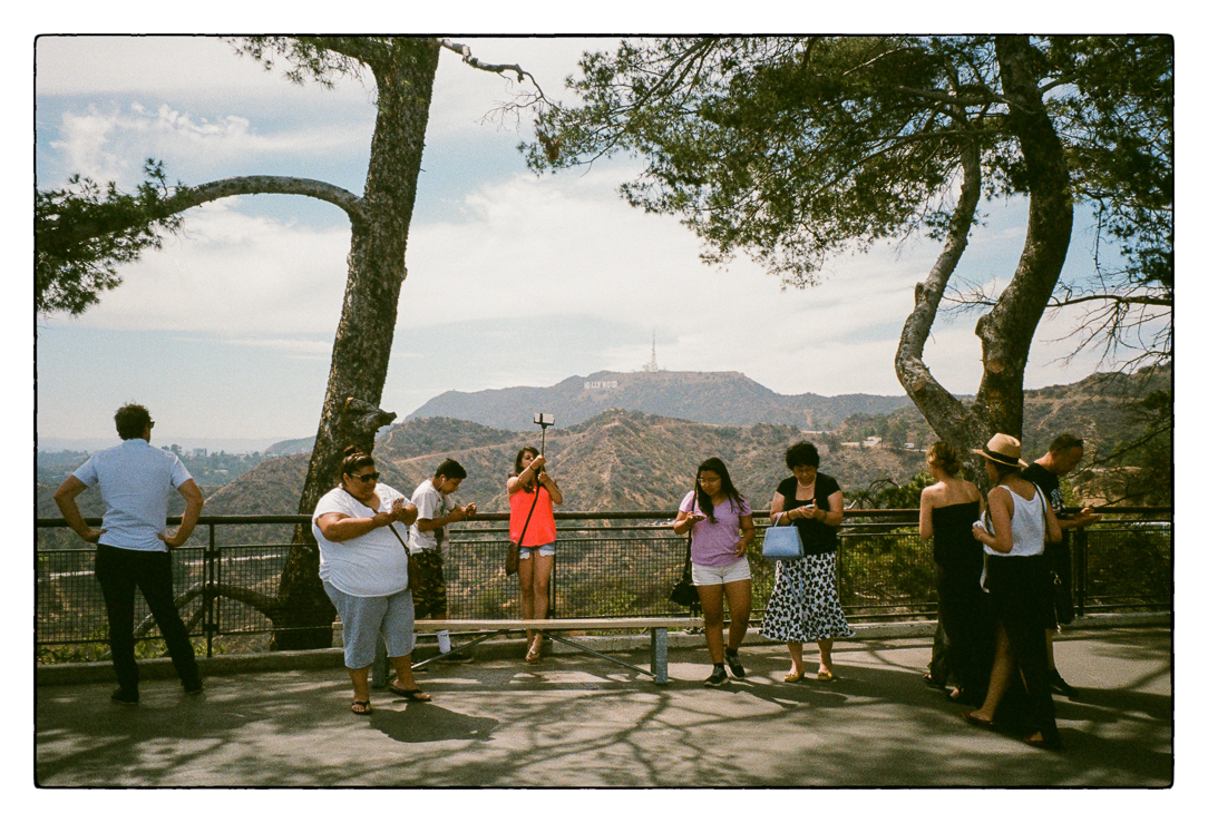 Griffith Park, Los Angeles, California 2015