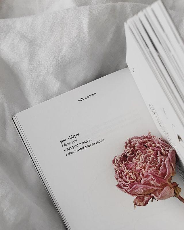 second day of spring feels. 🎶Dennis Lloyd - Nevermind  #lovelies #rupikaur #rupikaur #peony #peonies #flowermagic #flowerchild #wednesday #nowplaying #poems #poemsofinstagram #love #milkandhoney #california #socal #losangeles #iphoneonly #photooftheday #iger