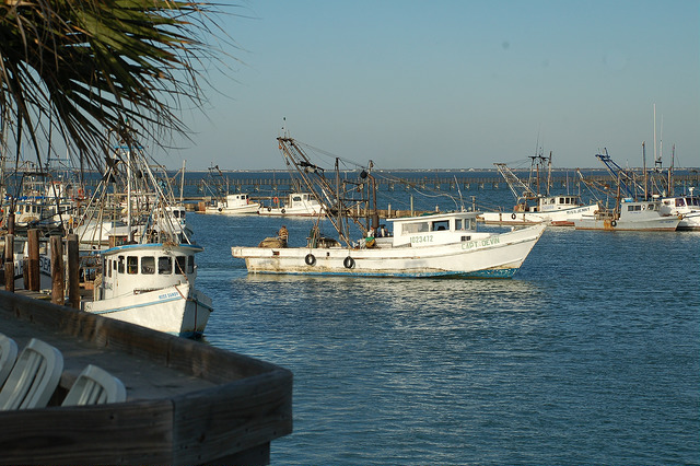View of the fishing harbor from Moondog Seaside Eatery.