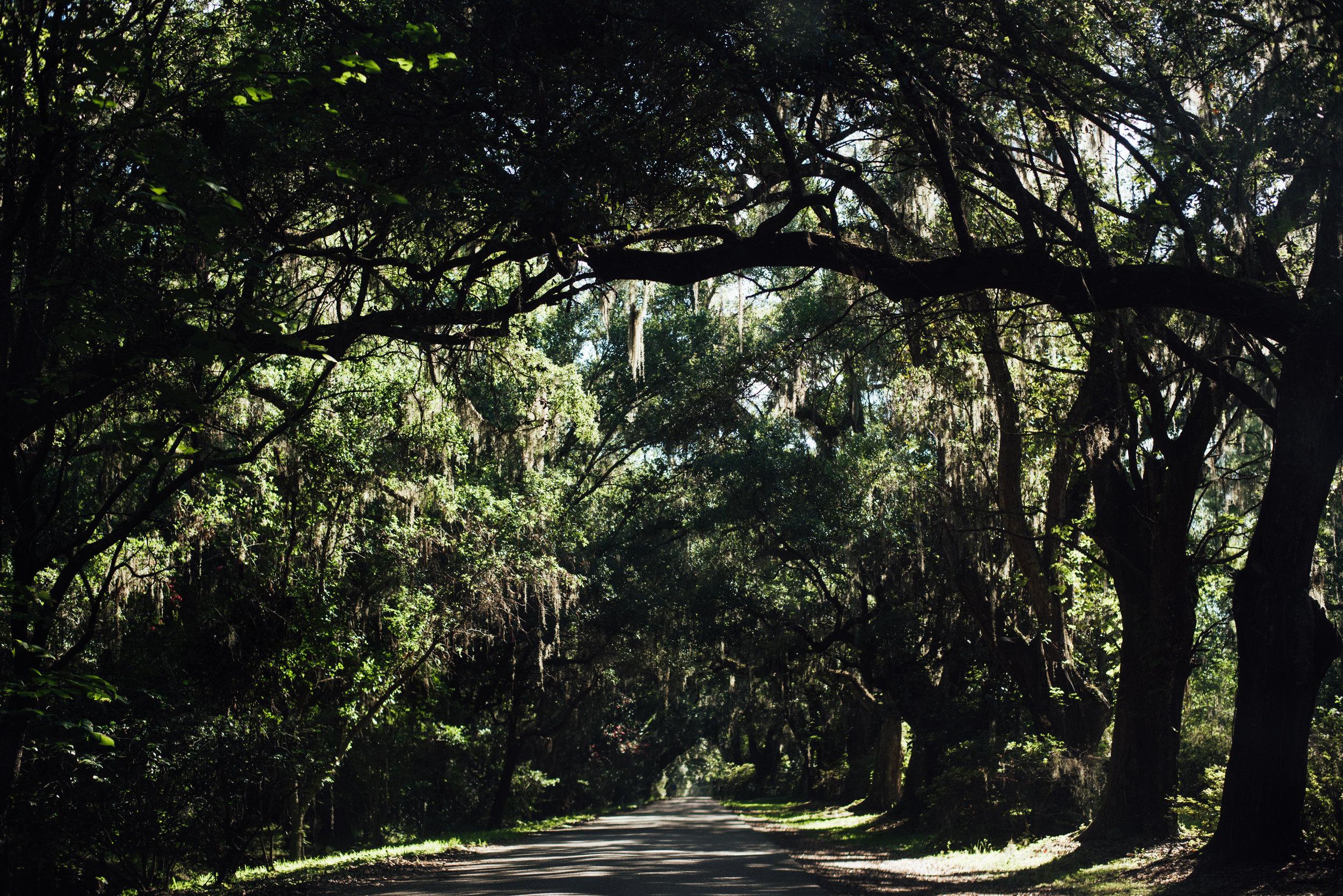 Charleston.Trip.TheStirewalts.2017-16.jpg