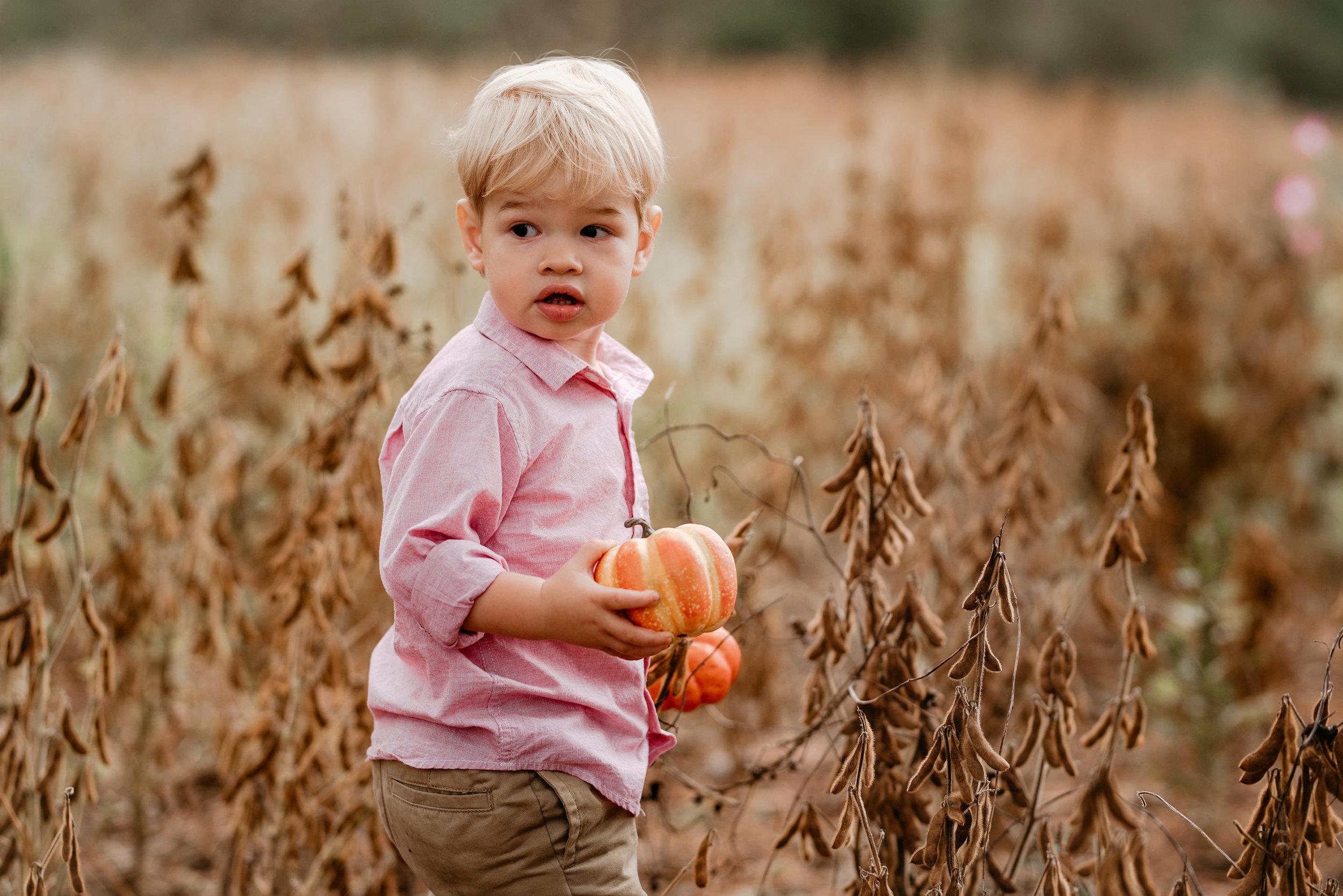 Honeycutt.Fall.family.©2017.TheStirewalts.Photography.LLC-59.jpg