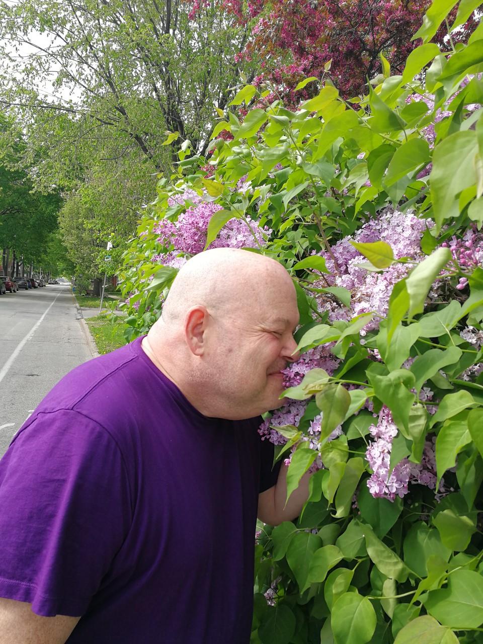 thumbnail_kirby lilacs.jpg