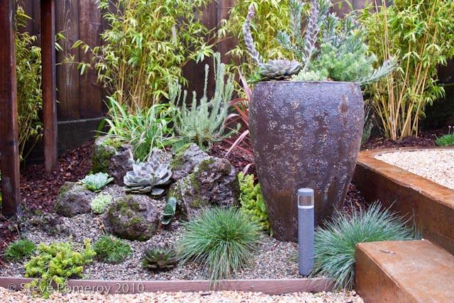 414 Douglass_Succulents.jpg